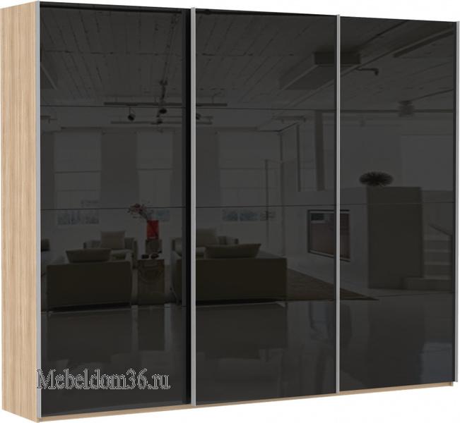 Шкаф-купе Эста 3-дверный, 12 черных стекол