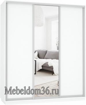 Шкаф-купе Экспресс Медиум (1 зеркало) трио
